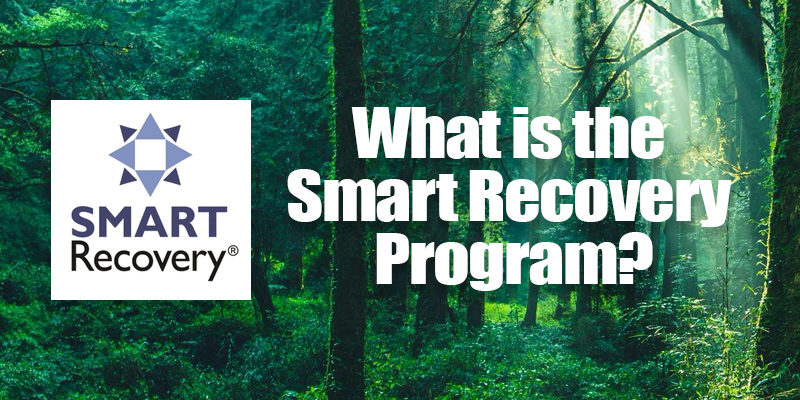 What is the Smart Recovery Program?